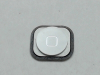 iPhone 5 Home Button, White